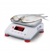 Ohaus Valor 4000 Food Production Scales