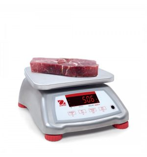 Abattoir & Meat Processing Scales