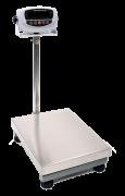CSC T1-500 2 Bench Floor Scale