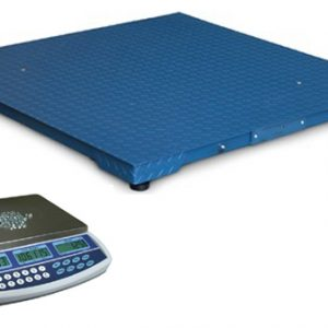 QHD Dual Counting Scale With Large Platform Scale