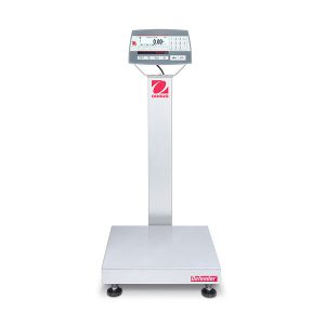 Defender 5000 Standard Bench Scale