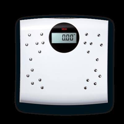 Seca 804 Scales