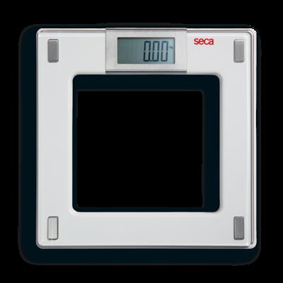 Seca 807 Scale