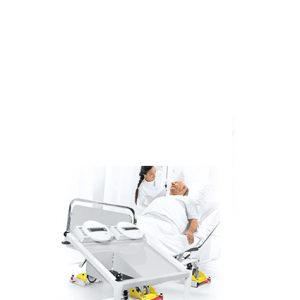 Bed & Dialysis Scales
