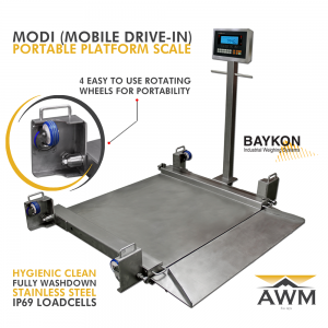 Modi Mobile Drive In Scale