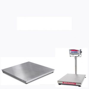 Stainless Steel Wash Down Floor Scales