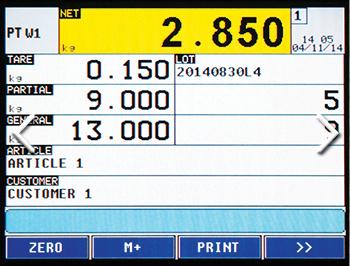 3590EGT-IECEX3GD Fully Customisable Screen