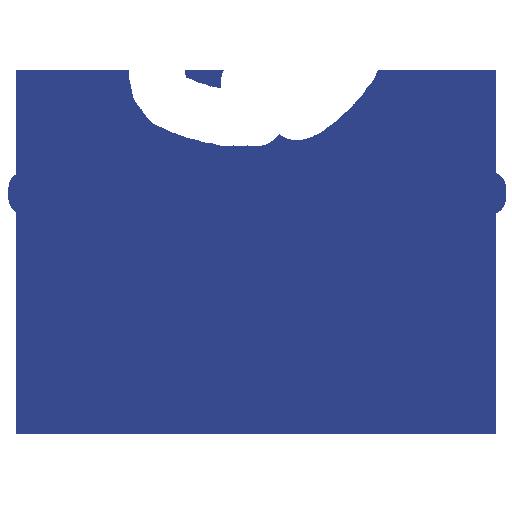 Vehicle & Motorsport